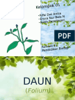 DAUN (Folium)