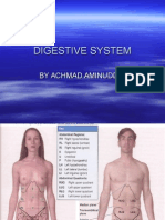 Dr.amin Digestive System
