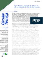 Adubação e Nutrição Da Cebola