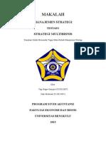 Strategi Multibisnis New
