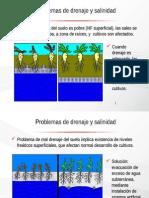 renaje y salinidad.pptx