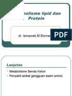 Metabolisme Lipid Blok X 2010