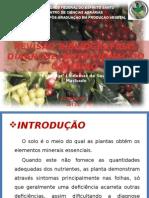 Revisão Bibliográfica Diagnose Nutricional Do Cafeeiro