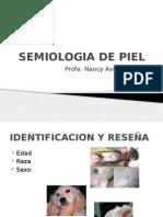 Semiologia de Piel