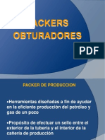 174462825-Packers-Cele