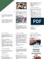 CRIPTICO BRIGADISTAS DEF CIVIL 2.docx