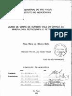 Jazida de Cobre de Surubim, Mineraligia e Petrologia