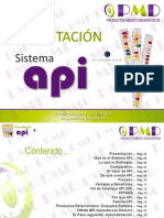 PRESENTACION API Ene2013.pdf