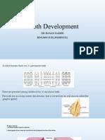 Tooth Development(Dr Hasan)