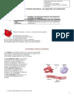guía del sistema circulatorio.doc