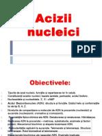 acizii nucleici 1a