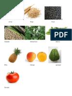 Granos Cereales Hierbas Frutas y Verduras
