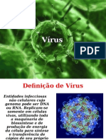 Caracteristicas Gerais Dos Virus