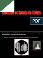BioCel - Métodos de Estudo Da Célula