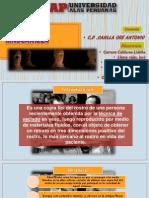 Practica de Mascarilla diapositvas.pdf