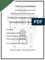 Monografia Memoria