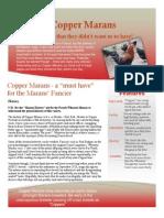 Copper Marans