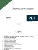 Documentele Și Registrele Contabile Obligatorii Folosite În Derularea Ppt