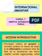 Drept Internaţional Public