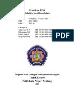 PPM laporan