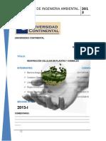Informe de Bioquimica 2013-1 Respiracion Celular en Amimales y Plantas