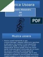 Muzica Usoara