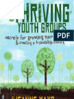 Thriving Youth Groups Preview