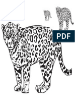 Leopardo sintesis grafica