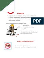 Manual de Sanidad