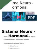 sistema-neuro-hormonal-1208618899288473-9