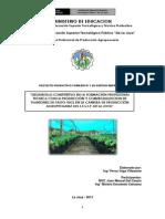 Proyecto Productivo de Produccion de Plantones
