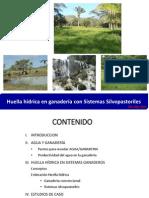 10 - Huella Hidrica Ney Rios