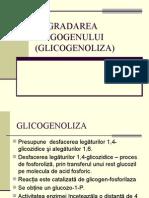 DEGRADAREA GLIGOGENULUI (GLICOGENOLIZA).ppt