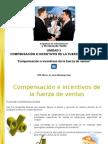 51_pre_compensación e incentivos de la fuerza de ventas.ppsx