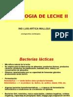 Bacterias Lacticas 2006