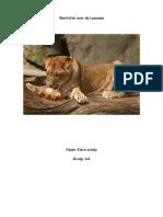 Werkstuk Over de Leeuwen