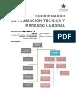Coordinador Formacin Tcnica y Mercado Laboral