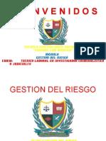 D. GESTIION DEL RIESGO.pptx
