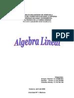 Actividad Nº1 Grupal Oneiver Algebra Lineal