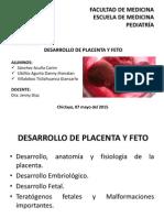 Desarrollo placentario