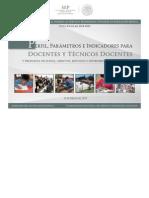 PARÁMETROS E INDICADORES DOCENTE (1).pdf