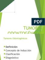 tumores dodntogenicos