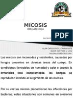 MICOSIS Completo
