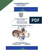 OBITO FETAL-Roxana Martínez Cruz.pdf