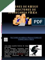 Factores de Riesgo Productores de Sobrecarga Física