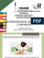 alimentación en embarazo e infancia