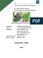 Informe n 02 Ambiental