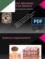 Expo-completa-de-Sistema-Tegumentario-lesiones.pptx