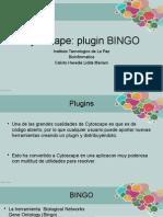 Plugin BINGO