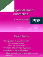 Congenital Hand Anomalies